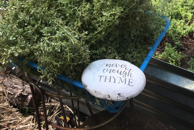 New Brooklyn Farms thyme Mount Rainier Maryland