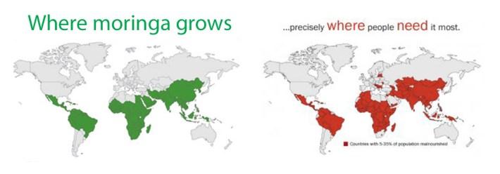 Image via treesforlife.org