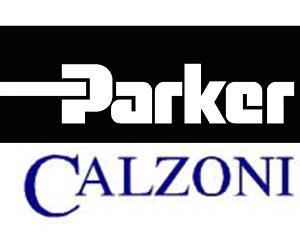 Parker Calzoni