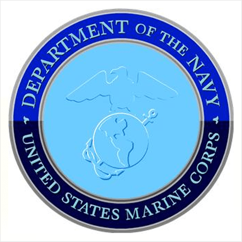 Department of the Navy symbol featuring an eagle