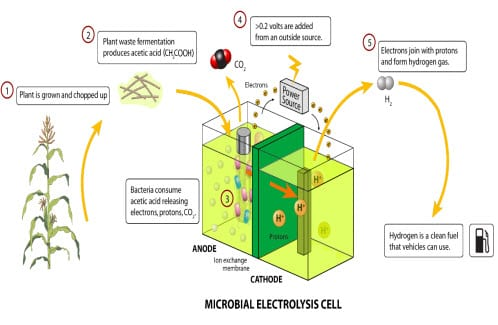 Microbial fuel cells could solve the shortage of drinking water in developing countries