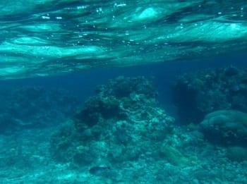 Wave Energy - Undersea Image