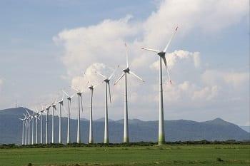 Vietnam Wind Energy - Image of Wind Farm