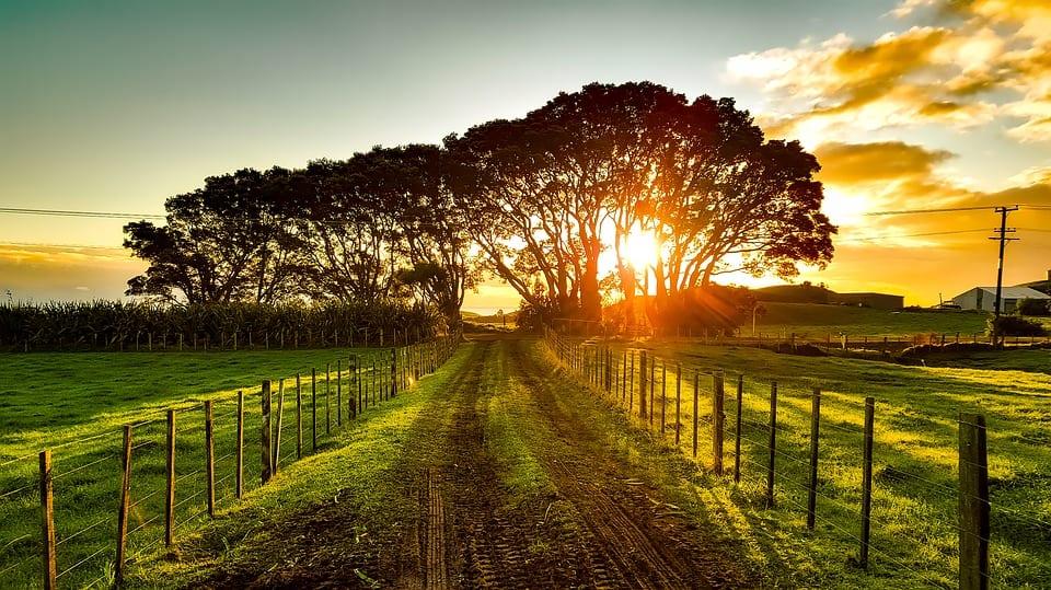 New Zealand unveils new commitment to renewable energy