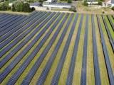 agrivoltaics - solar panel farm in field