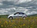 hydrogen fuel cells - environment - car