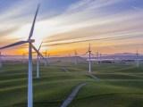 wind energy in Denmark - wind turbines in field