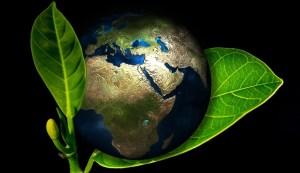 Global renewable energy - world in plant