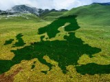 Warmest year - Europe outlne on meadow