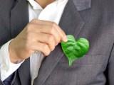 green business 2020