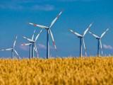 AWEA-California - wind turbines