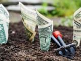 Renewable Green hydrogen - Investment - Money