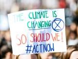 Fight climate change - Climate Change Activism