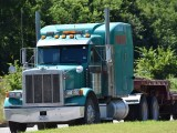 Fuel Cell Trucks - Truck near trees