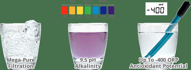 FREE pH Test Kit!