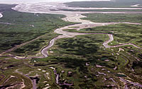 This photograph shows remnants of the former breach made here in February 1584, now a tidal channel. The marshland visible in the picture is former arable land.