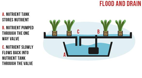 flood and drain