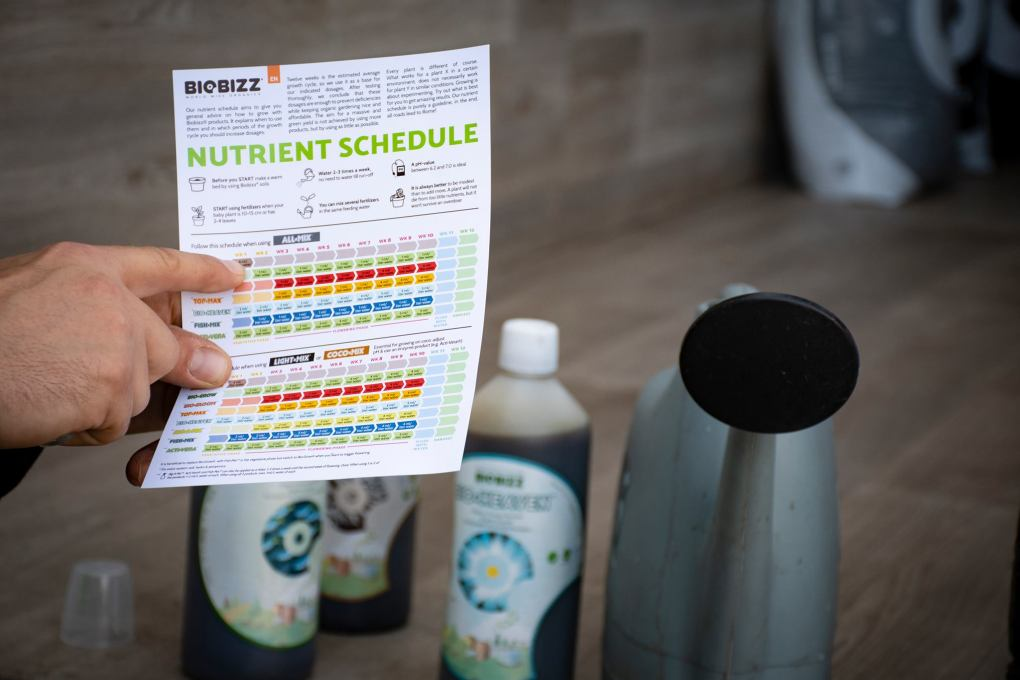 Biobizz Flushing Nutrients Schedule