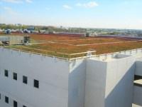 Garden Roof Assembly: Extensive - American Hydrotech, Inc.