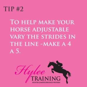 Make Your horses stride adjutable