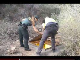 Cops find HUGE WEED underground factory