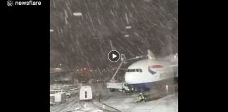 Winter Storm Bruce FORCES 800 CANCELED flights