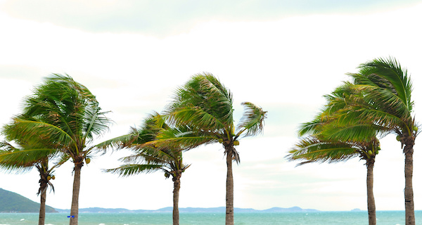 Using Self-Hypnosis To Help Running Performance In Strong Winds