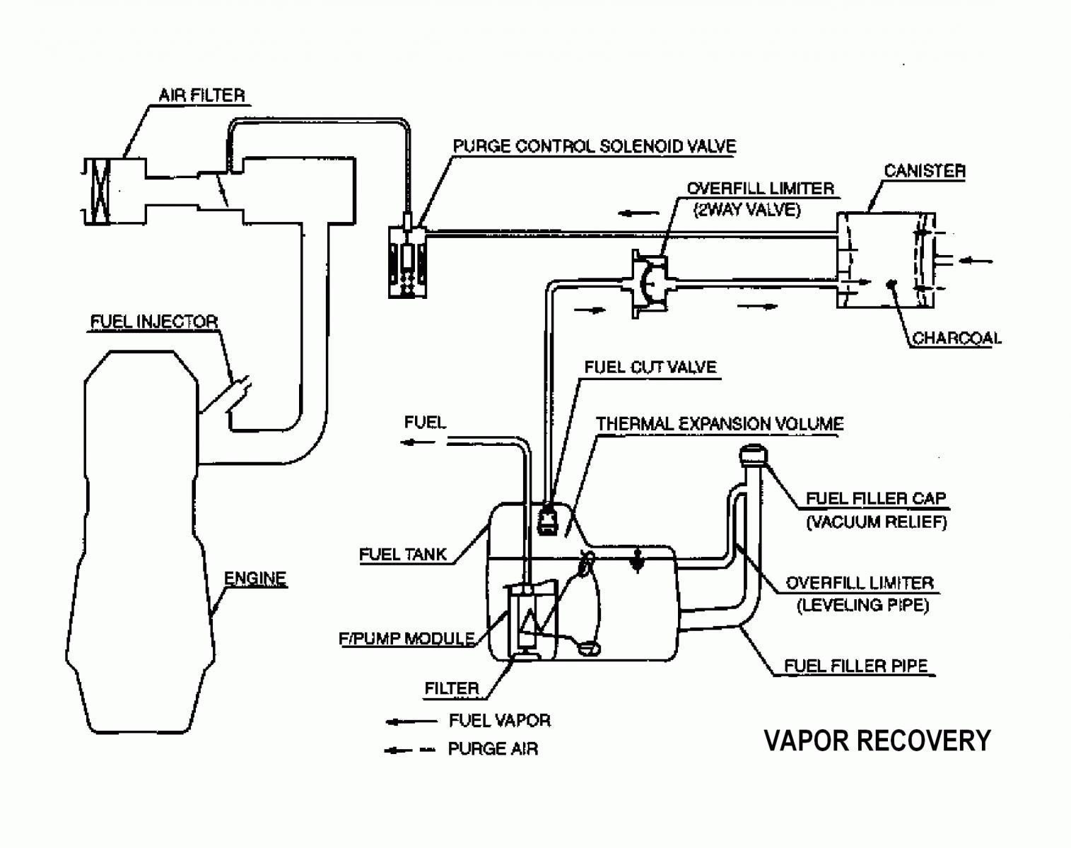 hight resolution of vapor loops jpg