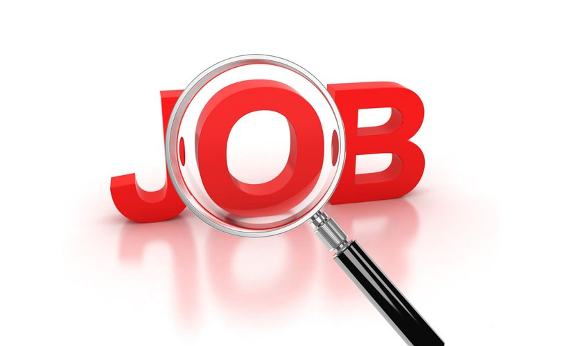 Information Technology Roles at PayPorte.com