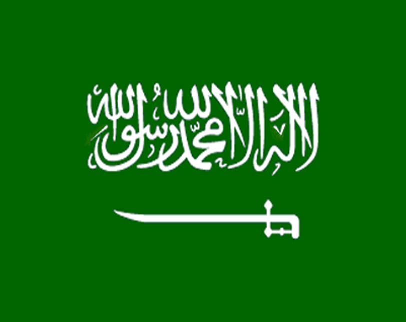 Saudi Arabia plans to build a new $500 billion metropolis that spans three countries.