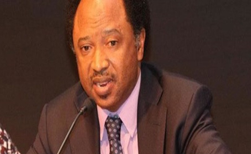 Shehu Sani tells Buhari to step down as Petroleum minister