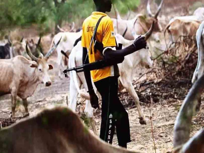 Horror As Herdsmen Invade UniAbuja Medical Hostel, Attack Students (Video)