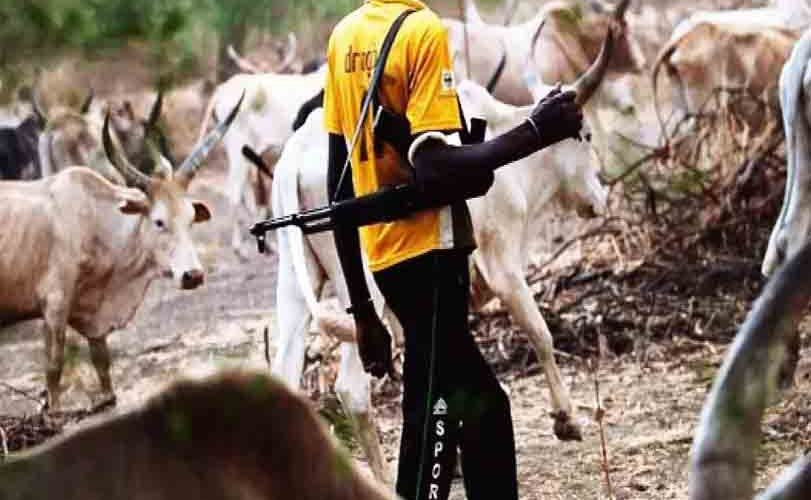 Police nab three herdsmen with AK-49 rifle