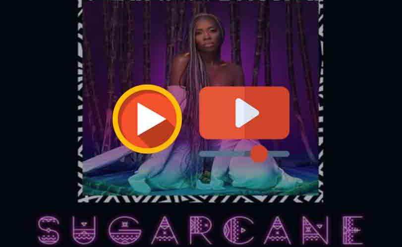 Tiwa Savage – Sugarcane