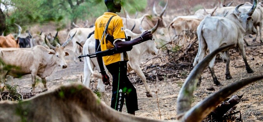 Soldiers kill local Vigilante man, free herdsmen in Edo