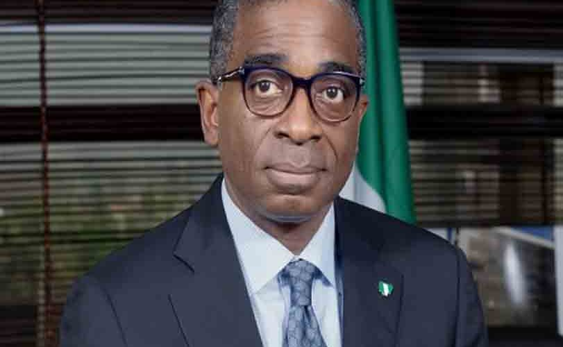 Buhari Re-appoints Segun Awolowo as NEPC CEO