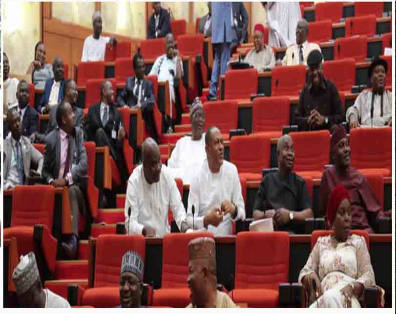 SUVs purchase: Senate shuns local automobile firms