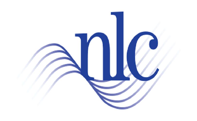 Borrow with caution, NLC warns FG
