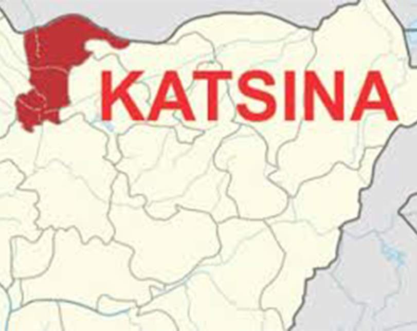 Immigration arrest 2 Nigeriens with pistol in Katsina