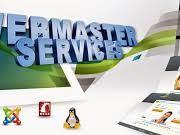 tugas dan anggung jawab web master