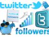 Cara Mengetahui Jumlah Maxsimal Pengikut Twitter Anda