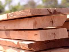 Legno naturale quercia