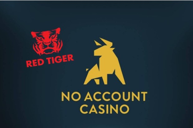 red-tiger-noaccountcasino Red Tiger live on No Account Casino