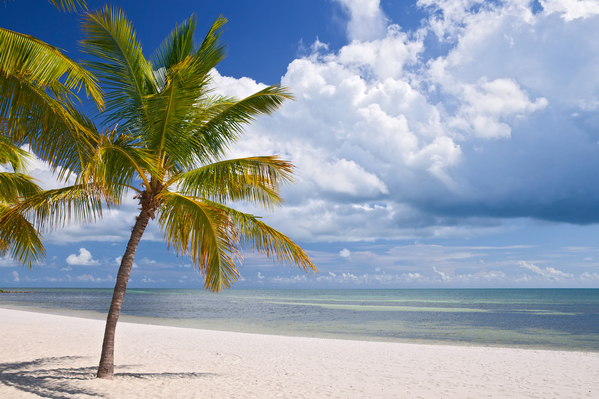 Study Safest Cities in Florida 2016