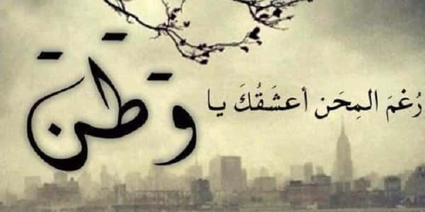 وطني اجمل قصيدة شعر مكتوبة عن الوطن للشاعر احمد شوقي