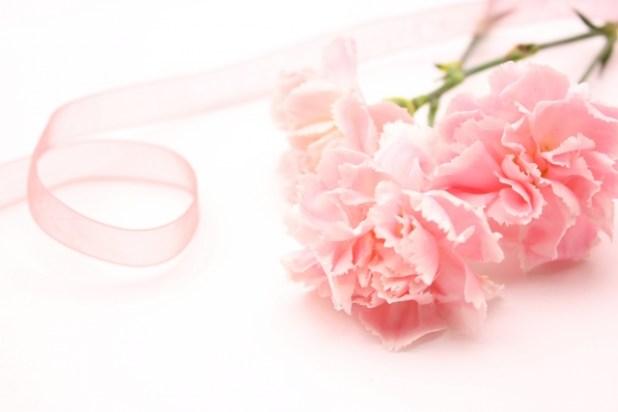ピンクのカーネーション