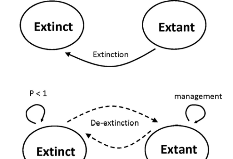 If extinction could be reversed, how would you decide which species to manage?