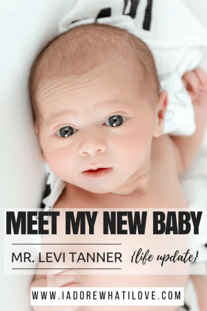I Adore What I Love Blog // Meet My New Baby: Mr. Levi Tanner // www.iadorewhatilove.com #iadorewhatilove