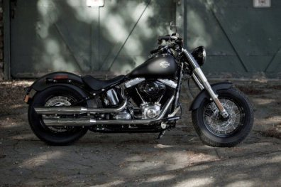 Harley Davidson Sportster Seventy-Two and Softail Slim 06