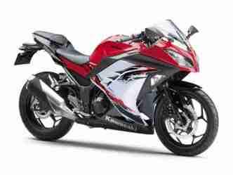 Kawasaki Ninja 250R 2013 24